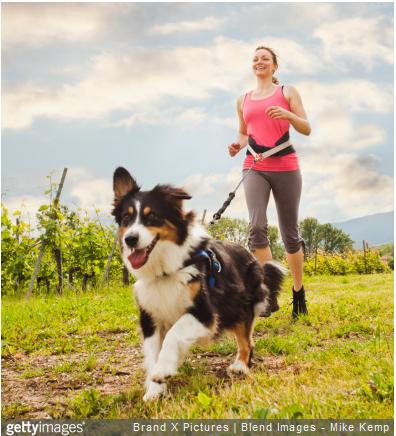 Quels sont les bienfaits du canicross sur votre santé et celle de votre animal ? Comment bien se préparer à cet exercice ?