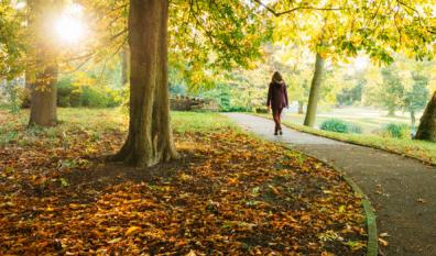 Améliorez votre santé avec 30 minutes de marche par jour