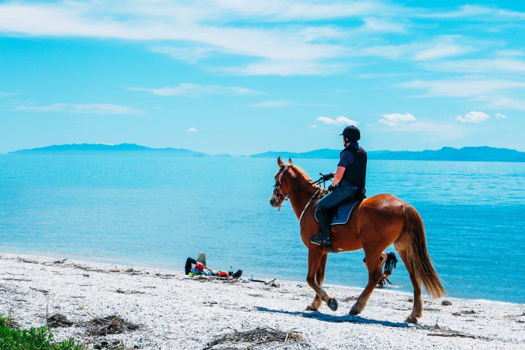 Cavalier qui remonte une plage sur le dos de son cheval
