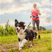 Canicross : pourquoi est-ce bon pour la santé ?