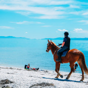 Pratiquer l'équitation en toute sécurité